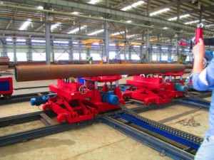 Track (Rail) & Carriage Conveying System pictures & photos