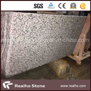 Chinese Polished Oriental White Bianco Sardo G640 Granite Slab