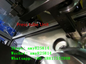 High-Speed Automaticly Tubo Filling and Sealing Machine (B. GFN-100) pictures & photos