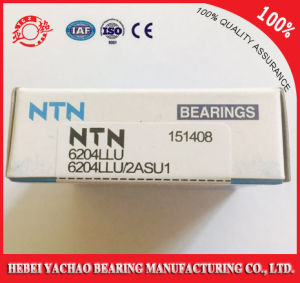 Good Service High Quality Deep Groove Ball Bearing 6204 NTN