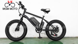 20′ New Model Fat Tire Big Power Electric Bike pictures & photos