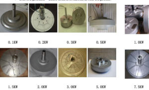 BLDC Permanent Magnet Motor for Windpower pictures & photos
