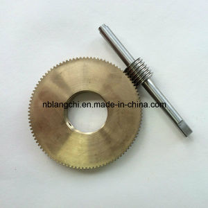 Set Transmission Drive Worm Shaft and Worm Wheel Gear pictures & photos