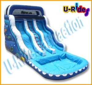 large water slide inflatable trampoline, outdoor water slide with pool, CE inflatable water slide pictures & photos