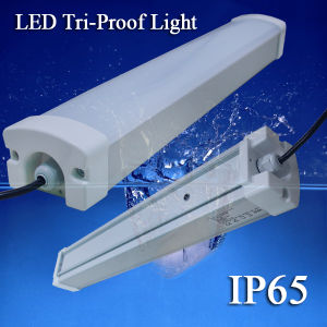 AC100~240V IP65 1.2m 40W LED Tri-Proof Light with 5years Warranty pictures & photos