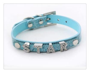 English Alphabet Dog Collar Pet Collar pictures & photos