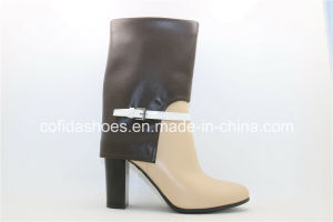 Hot Style High Heel Lady Boots with Fashion Designs pictures & photos