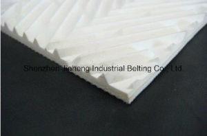 PVC Conveyor Belt Model No. Tc22-269 16n
