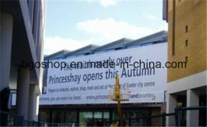 Mesh Fabric PVC Mesh Banner Fence Printing (1000X1000 18X9 270g) pictures & photos