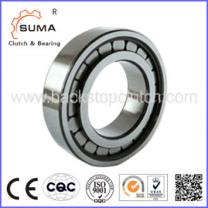 Single Row Radial Cylindrical Roller Bearing SL183005 pictures & photos