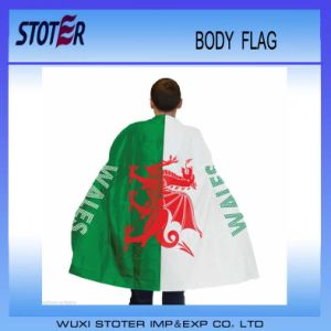 Top Quality Large Custom Flags pictures & photos