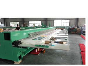 Hot Sell Chenille Embroidery Machine for Garment Industry pictures & photos