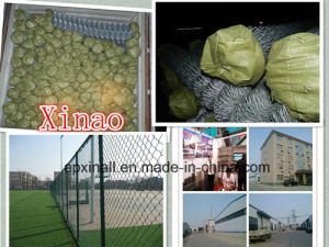 Football/Bastekball Playground Fence pictures & photos