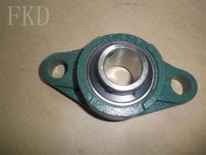 Machine Self Aligning Ball Bearing /Mounted Bearing Units Ucfl200 Ucfl300 pictures & photos