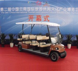11 Seater Electric Sightseeing Car pictures & photos