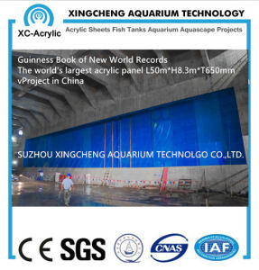 Guinness Book of New World Records Transparent 650 mm Acrylic Panel Sheet Aquarium pictures & photos