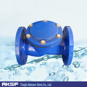 Cast Iron Check Valve Ball Type pictures & photos