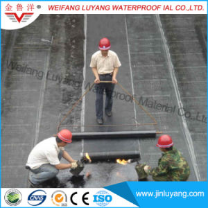 3mm Cheap Price Sbs Modified Bitumen Waterproof Membrane for Roofing pictures & photos