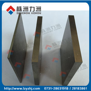 Hip & CIP Sintered Tungsten Carbide Plate