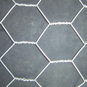 Flat Surface Hexagonal Wire Netting for Poultry pictures & photos