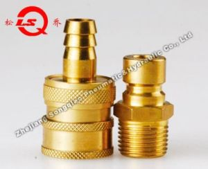Lsq-Q3 Mould Quick Coupling (BIG) (BRASS) pictures & photos