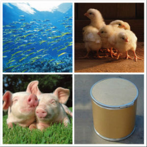 GMP Pharmaceutical Methionine for Livestock, Poultry and Aquaculture