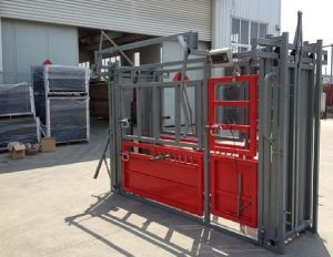 Cattle Crush Hdp or Powder Coated on Sale pictures & photos
