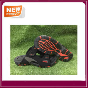Black Color Summer Fashion Beach Sandal Slippers pictures & photos