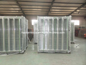 Australian Standard 2.1mx1.8m Cattle Panel for Hot Sale pictures & photos