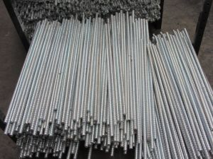 Formwork Steel Tie Rod for Construction pictures & photos