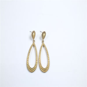 New Item Oval Shape Fashion Jewellery Earrings pictures & photos