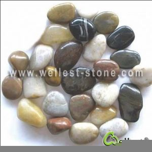 Black/Yellow/Red/White/Grey High Polished Pebble Graval Stone Paver and Paving pictures & photos