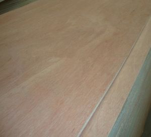 9mm Red Pencil Cedar Plywood pictures & photos