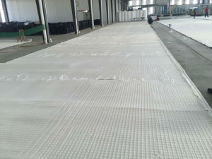 Fiberglass Geogrid with Nonwoven Geotextile pictures & photos
