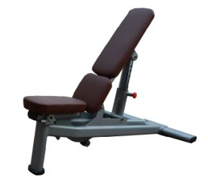 Fitness Equipment / Gym Equipment / Commercial Use Adjustable Bench pictures & photos