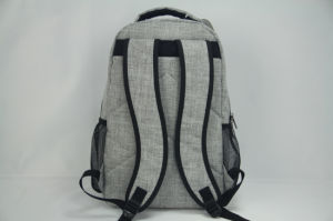 New Backpack Design for Business School Outdoor pictures & photos