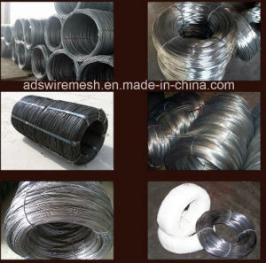 Swg/Bwg 16# - 22# Black Annealed Bingding Wire pictures & photos