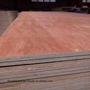 18mm Bintangor Face Plywood Hardwood Core Sheets Lumber pictures & photos