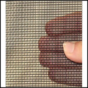 Manufacture Ss304L Woven Netting (L-43) pictures & photos