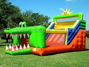 Inflatables Amusement Park, Inflatable Dog Water Slide (B4019) pictures & photos