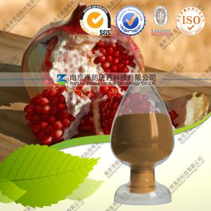 100% Natural Plant Extract Punica Granatum L. Pomegranate Extract Powder pictures & photos