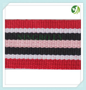 Different Colours & High Quality Polyester Webbing Tape pictures & photos