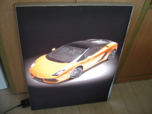 Outdoor Advertising Display Fabric LED Light Box pictures & photos