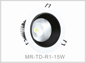 12W LED Down Light &LED Ceiling Light pictures & photos