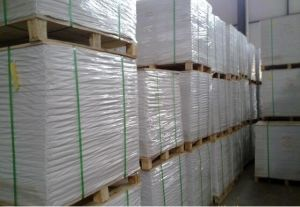 High Quality Newsprint and Offset Printing Paper pictures & photos