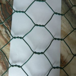 Low Price Galvanized and PVC Coated Gabion Box pictures & photos