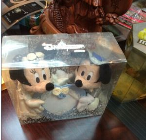 Pet Plastic Transparent Box for Children Doll pictures & photos