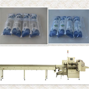 Massive Foods Packing / Packaging Machine (SFD 590) pictures & photos
