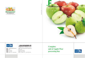 Complete Apple Fruit Processing Line Turnkey Project pictures & photos
