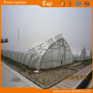 High Cost Performance Film Covered Green House pictures & photos